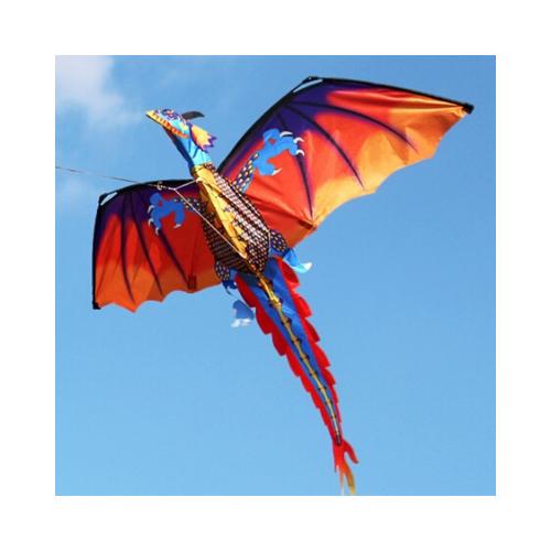 matériel et accessoire cerf volant
